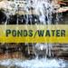 Ponds Waterfalls Maintenance and New.