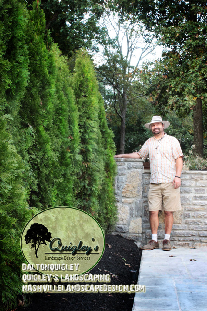 Nashville Landscape Designer Dalton Quigley against a wall with evergreens.