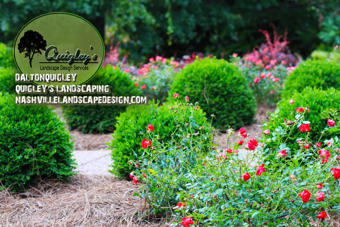 Nashville Landscape Design Services for Brentwood Franklin TN