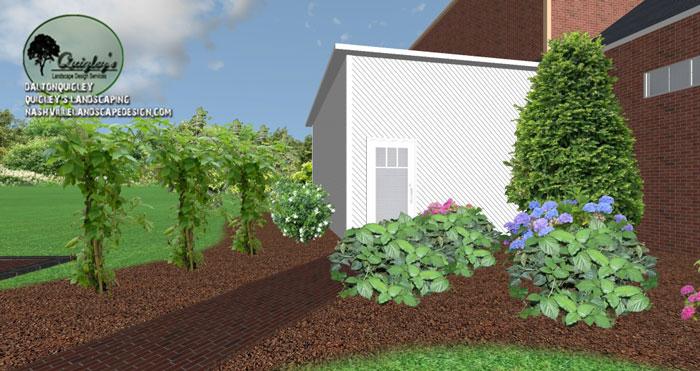 Backyard-Berries-Franklin-TN, Nashville, Brentood, Spring Hill, and Nolensville TN.