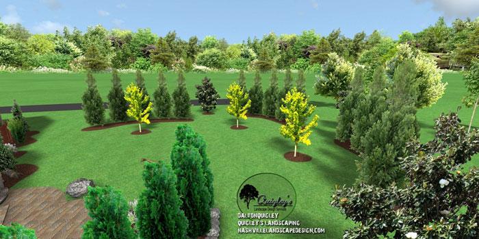 Ginkgo-Landscape-Design