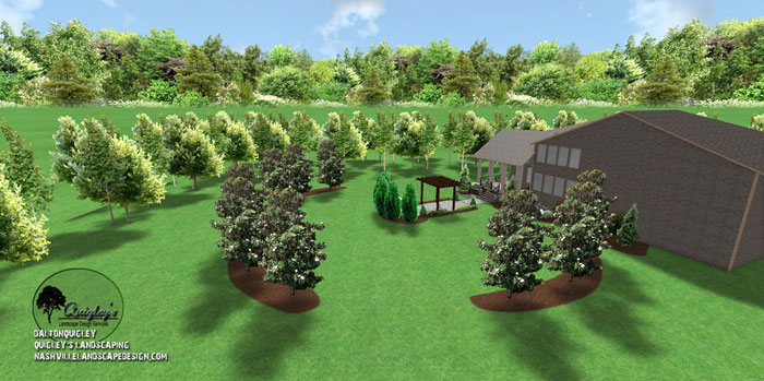 large-yard-landscape-design