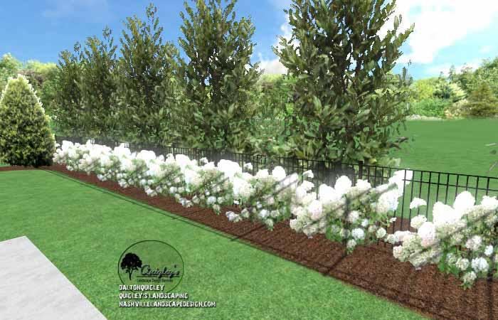 Spring Hill Privacy Gardening12