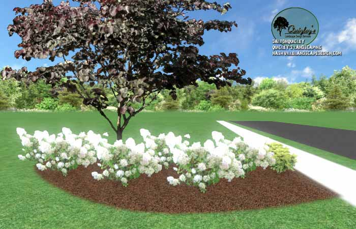 Spring Hill Privacy Gardening25