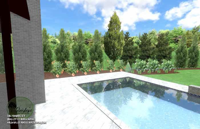 Pool Life backyard design027