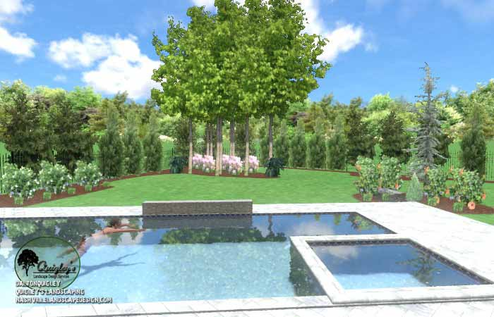 Pool Life backyard design028